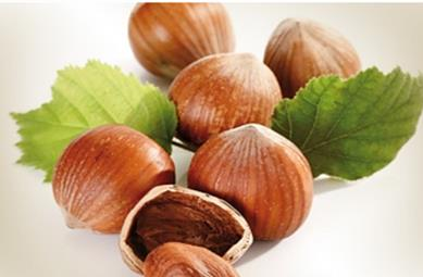 The employees of SRSC obtained bioextract  from hazelnut shell
